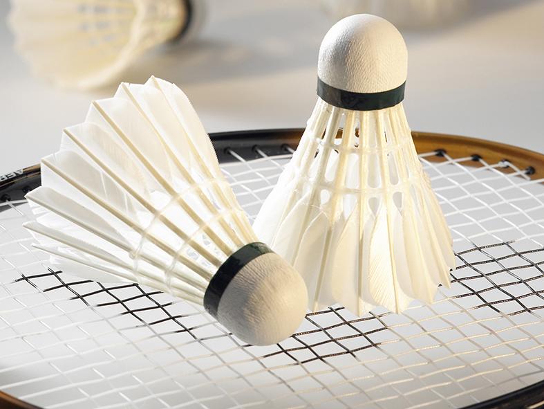 IK Frem Badminton på jagt for en plads i Danmarksserien