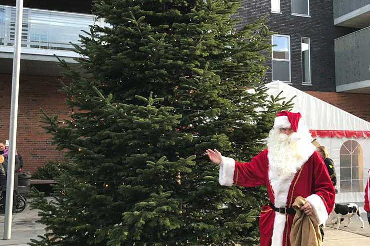 Hvor blev Støvrings flotte juletræ af?
