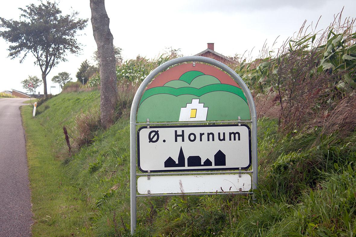 Sommermøde i præstegårdshaven i Øster Hornum